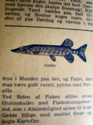 """Kogebogen """"Køkkenkalenderen"""" (1935) anbefaler, at man spiser flere danske ferskvandsfisk. Det er både billigt og patriotisk!"""
