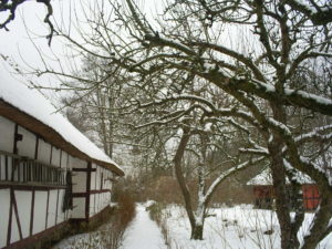 Anna kålgård er sneet helt til. Det er ikke til at gøde jorden med vinterens møg fra hønsehuset