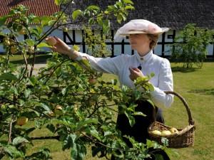 Fruen i abildgården